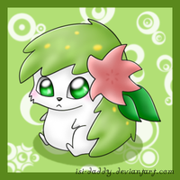 cute Shaymin by Isi-Daddy