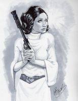 Princess Leia by Petarsaur