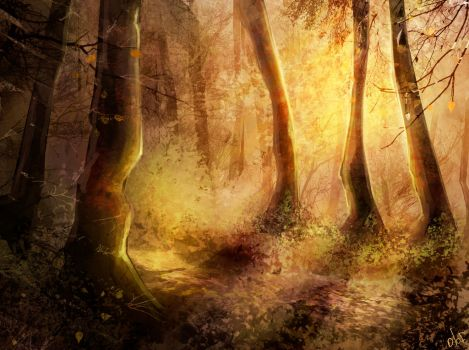 Forest by Olof-M