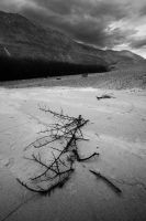 Desolation by orographic