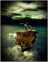 Without a Paddle by balloons