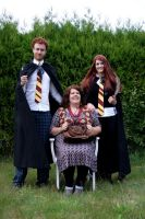 The Weasley Family by majann