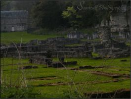 Roche Abbey 5 by Samcatt