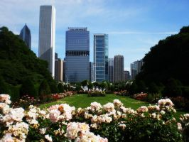 Chicago Garden Outskirts by A-New-Lesson