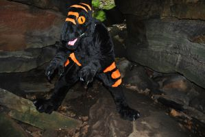 In thre cave by Rathkin
