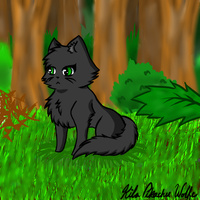 Hollyleaf - Alone in the Grass by kawaiikiba