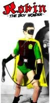 Robin the Boy Wonder by StevenEly