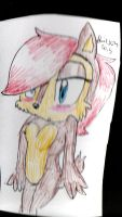 Sally Acorn by HollyBjeam