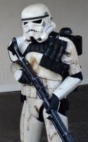 Sandtrooper (3) by masimage