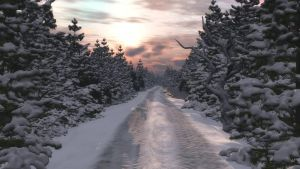 Road In Winter1 by anne1956