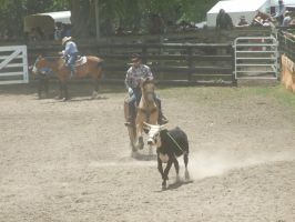 Rodeo44 by Jean3071