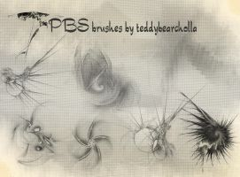 PBS brushes by teddybearcholla