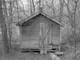 the shed that held memories by Richardbargowski
