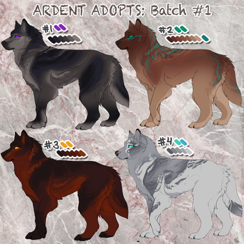 Ardent Adopts: Batch #1 (CLOSED) by foxipaw