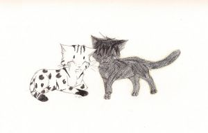 Leopardmoon and Echostorm for Kitty-Luvs-Art by Bambiiie