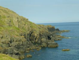 Lizard Point: View 15 by yaschaeffer