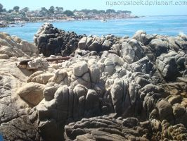 Monterey - Beach 03 by Nyaorestock