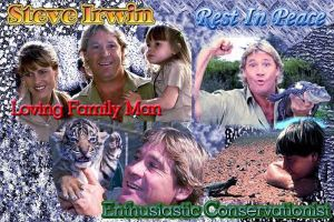 Steve Irwin RIP by shadow-of-a-raven