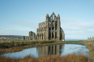 Whitby Abbey and Pond by astrogoth13