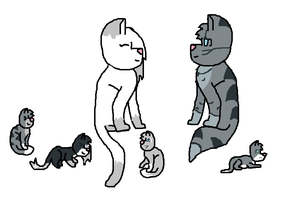 Cracked Pairings 3/4 ((jayfeather X icyfeet)) by Ask-Mosspath