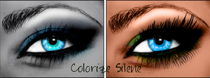 The eye 2 by silene7