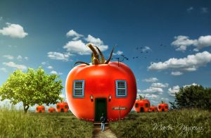 House Tomato by marcosnogueiracb