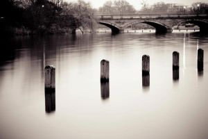 Hyde Park London by drouch