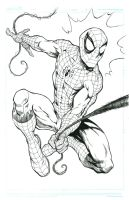 Spider Man ....commish by bathill8