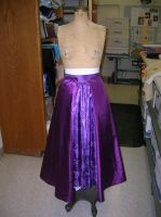 Rapunzel Cosplay Progress by AllenGale