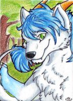 ACEO Mollywolf by Ellie-theAzurea