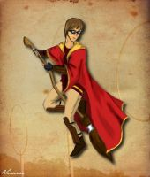 Quidditch by virunee