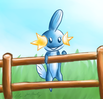 Mudkip for Sailor-Pikmin by litecrush