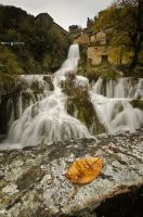 Autumn by the waterfall by MarioGuti