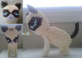 3D Origami - Grumpy Cat by Jobe3DO