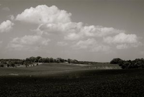 Black and White Countryside by MNgreen