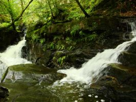 waterfall in the woods by Estruda