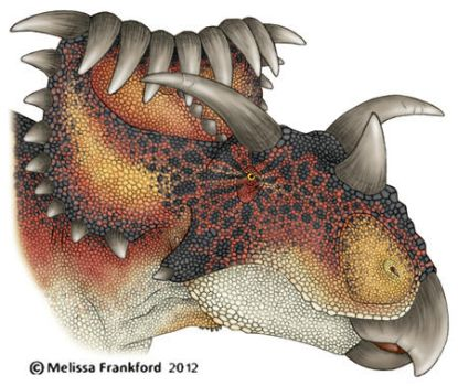 Kosmoceratops by mmfrankford