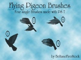 Flying Pigeons Brushes PS 7 by BeltaneFireStock