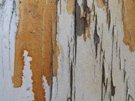painted wood 5 by juutin-stock