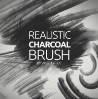 Realistic Charcoal Brush by phamexpress12