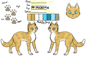 Reference Sheet for :Etherealwish: by EtheTheKitteh