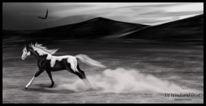 Of Wind and Dust by Agent12