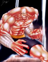 SAGAT: for the artjam :D by darkeyez07