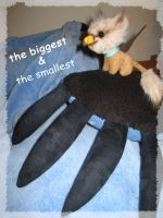 the biggest and the smallest by Nenu