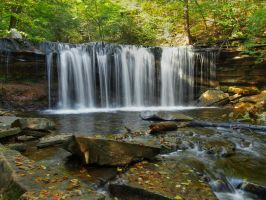 Ricketts Glen State Park 90 by Dracoart-Stock