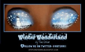 Winter Wonderland Eyes by MsTemmii