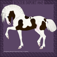 Winter Import #645 by DovieCaba