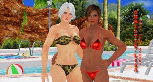 Christie-Lisa  DOA5  POOL-QUEENS by blw7920