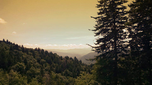 Smoky Mountain by andrewbaack