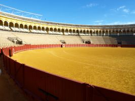 Seville Bull Fight Festival 06 by abelamario